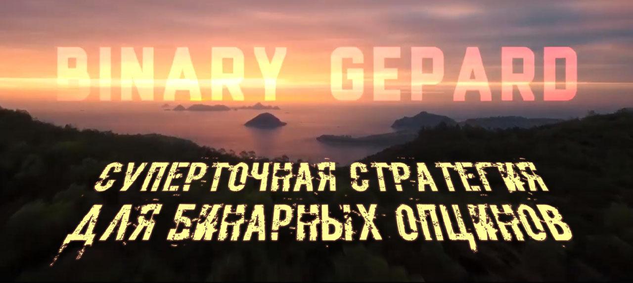 Суперточная стратегия Binary Gepard